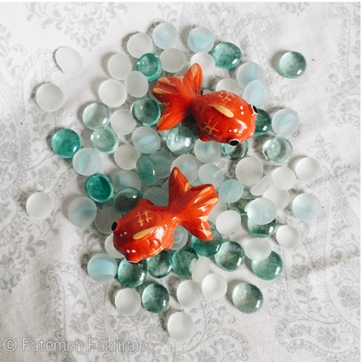 Goldfish for haft sin